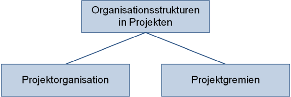 Organisationsstrukturen in Projekten - Unterteilung, (C) Peterjohann Consulting, 2018-2021