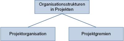 Organisationsstrukturen in Projekten - Unterteilung, (C) Peterjohann Consulting, 2018-2020