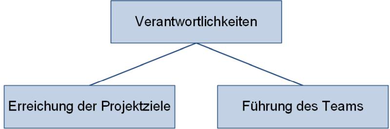 Die Verantwortlichkeiten des Projektmanagers, (C) Peterjohann Consulting, 2020-2021